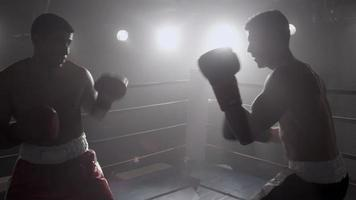 Portrait de boxeur debout dans le ring prêt à se battre video