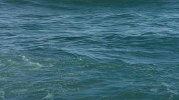 surfare som paddlar i havet, slow motion video