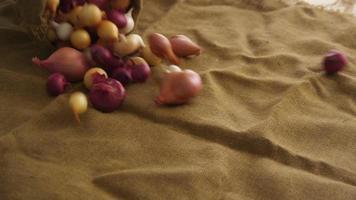 despejando o saco de cebolas e chalotas, câmera lenta video