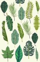 tropical leafs botanical background design vector