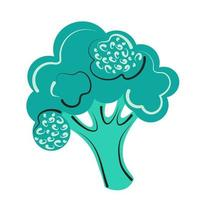 Abstract decorative vector illustration of broccoli Farm vegetable on an isolated white background