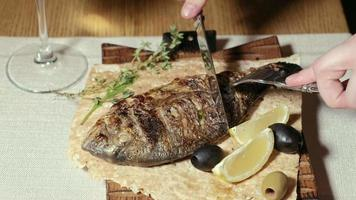 Close up shooting grilled fish with olives and a slice of lemon on pita bread video