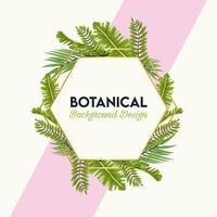 botanical lettering in poster with leafs in hexagon frame vector