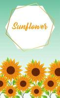 beautiful sunflowers garden with frame vector