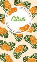 citrus fruit poster with oranges and leafs circular frame vector