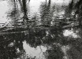 Lluvia en la carretera asfaltada con reflejo de sombra de árbol en el parque foto