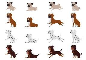Pug Boxer dog Dalmatian and Rottweiler in different poses vector