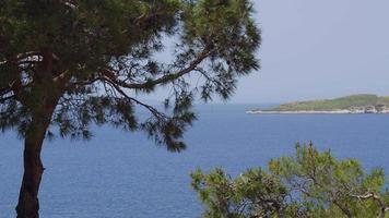 A tranquil landscape with trees, a calm ocean and a small island video
