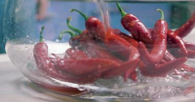 Hot Red Chili Peppers Rinsed in Water video