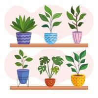 seis plantas de interior en macetas de cerámica sobre estantes vector