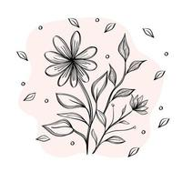 flower and leaves plants ecology drawn icon vector