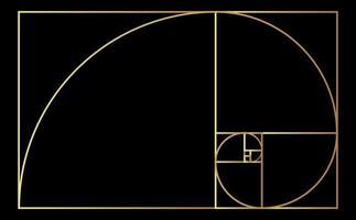 golden ratio circles with golden spiral template vector
