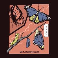 Butterfly metamorphosis comic illustration vector