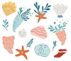 conjunto de conchas marinas vector