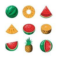 Fresh tropical fruits vector