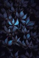 blue plant leaves in the nature photo