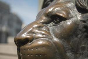 León de bronce en el casco antiguo en el monumento. foto