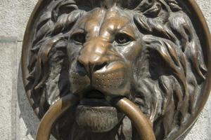 león de bronce en el fondo de pantalla de la ciudad vieja foto