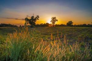 hermoso paisaje rural al atardecer foto