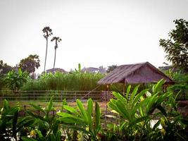 Old lifestyle cottages in Asian countryside photo
