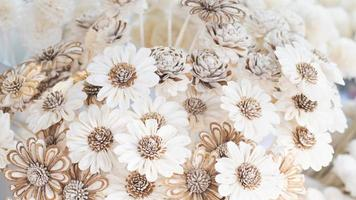 White cosmos Mulberry Paper photo