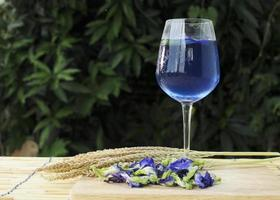 Iced blue drink with butterfly pea flowers photo