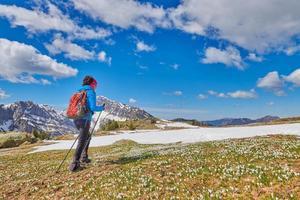 Una mujer camina en un prado de montaña con un azafrán en flor foto
