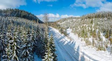 Winter landscape in the northern woodlands photo