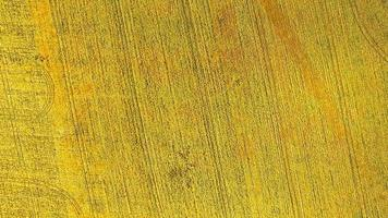 Aerial view of the yellow wheat crop field photo