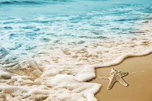 Starfish and soft wave on the sandy beach photo