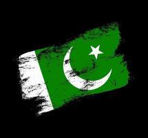 pakistan flag grunge brush background vector