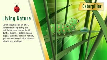 Living Nature Caterpillar in grass vector