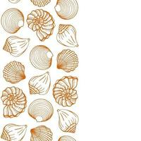 Seashells frame Sea and ocean design template Vector illustration Vector card templates Perfect for business card invitation wedding and web design