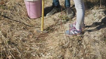plantando mudas de árvores com uma garotinha video