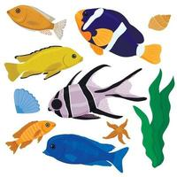 Vector collection of colorful exotic fish. Set of tropical fish isolated on a white background