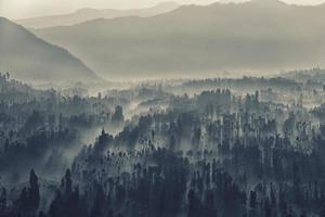 parque nacional bromo tengger semeru temprano en la mañana foto