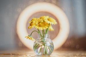 margaritas amarillas en un jarrón de vidrio foto