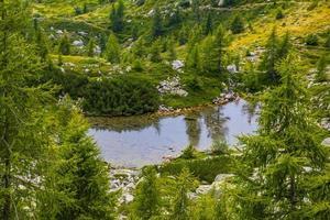 pequeño lago alpino foto