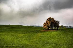 cielo nublado sobre un prado foto