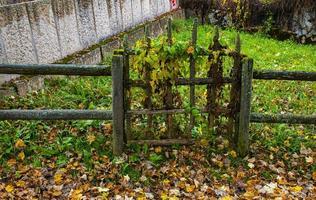 pequeña puerta cubierta de hojas foto