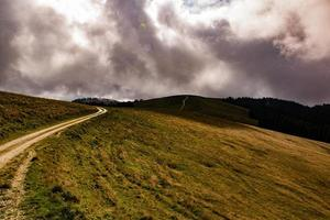 Country road with curves photo