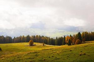 nubes sobre un prado foto