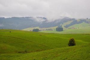 colinas cubiertas de hierba y nubes foto