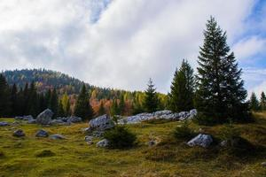 Autumn forest and clouds photo