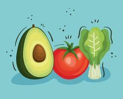 conjunto de verduras frescas y saludables vector