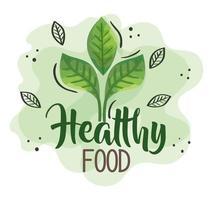 cartel de comida sana con hojas naturales vector