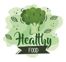 healthy food poster with broccoli and leaves vector