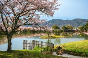 Estanque de Osawa con flor de cerezo en Arashiyama en Kioto, Japón foto