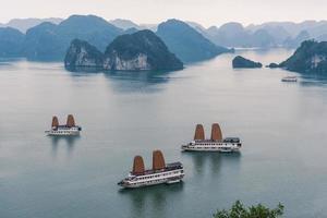 bahía de halong o bahía de ha long en vietnam foto