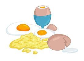 Egg Recipe Collection vector